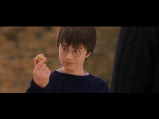 Harrys Learns Quidditch - Harry Potter and the Philosophers Stone