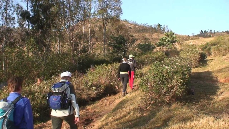 Madagascar - 2011 - part 2