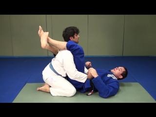 Roger Gracie - armbar vs posture in triangle