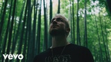 WALK THE MOON - Tiger Teeth (Official Video)