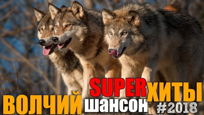 Волчий Шансон 2 - Супер хиты русского шансона