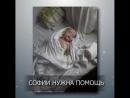 СРОЧНО 🆘️🆘️🆘️ Благотворительный Фонд Живи и Дари жизнь другим объявляет сбор на сумму: 150 000 рублей. Магомедовой Сафие вс