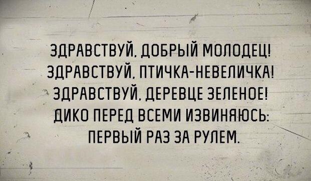 https://pp.vk.me/c635106/v635106897/2384/_hUq5divv9k.jpg