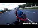 Moto Pulse Попец/Мотоциклист не растерялся .