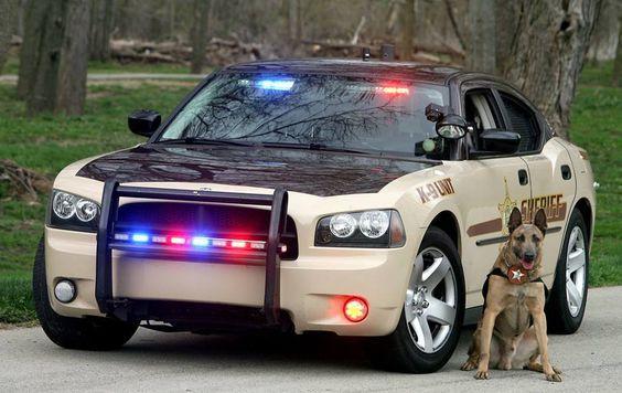 Четкая полиция штата Колорадо