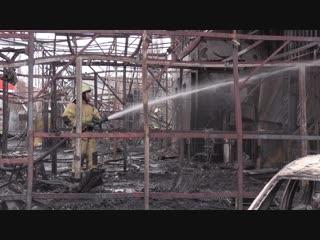 Пожар в Мурино, мусоровоз против скорой, и страшный зверь-грибник. Отдел происшествий 09.11.2018. Невские новости