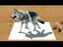 3D Pencil Drawing: Walking Wolf - Speed Draw | Jasmina Susak