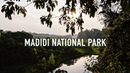 Madidi National Park | Amazon Jungle Tour in Bolivia