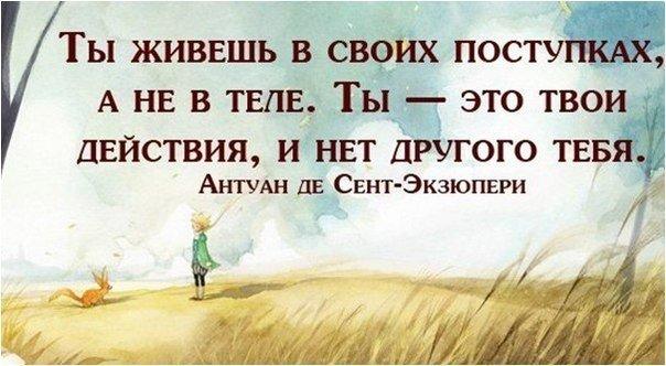 http://cs409031.vk.me/v409031650/77c8/kMIa3MKhMMk.jpg