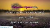 Косинский Андрей Корюшка Караоке версия Full HD