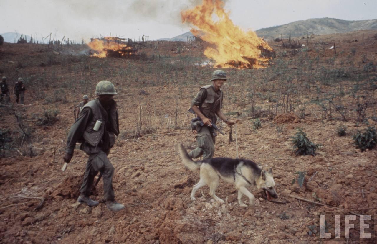 guerre du vietnam - Page 2 IiDX1AX7aXw