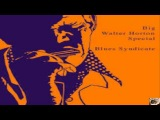 Big Walter Horton Walter  Shakey  Horton Mean Mistreater