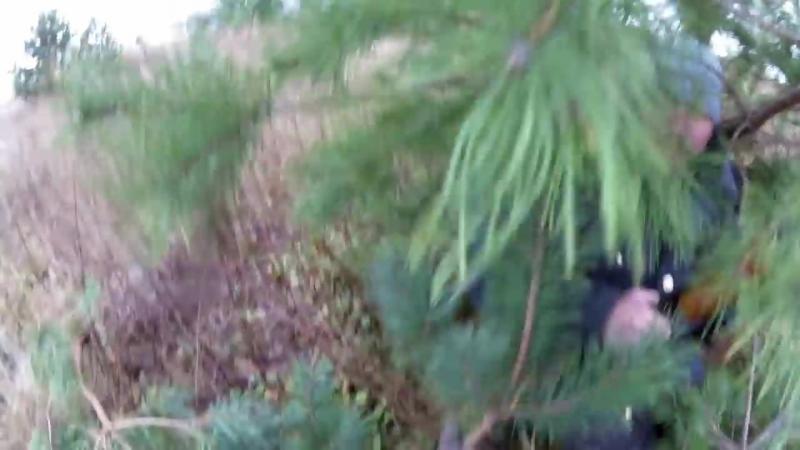 Удачная охота на тетерва с чучелами, ИЖ-27