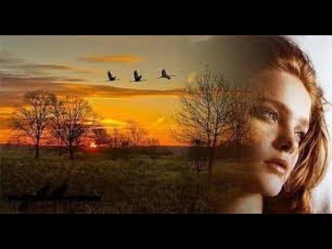 Какая красивая женская любовь Не Могу Без Тебя Музыка слова и исполнение Олеся Павлова