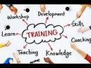 BePic Тренинг,Анализ,Рекомендации,Бизнес план БиЭпик Elev8,Acceler8