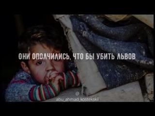 Стихи Сирийского мальчика