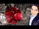 One Million Roses for Dimash Димаш Құдайберген