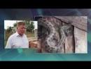 РенТВ 112 Экстренный вызов 09.07.18 - дневной выпуск жители северной осетии переживают нашествие змей
