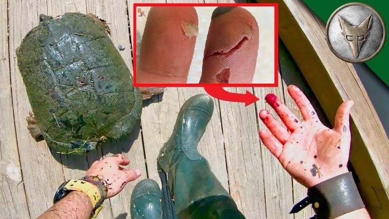 УЖАСНЫЙ УКУС ОГРОМНОЙ ЧЕРЕПАХИ.Каймановая черепаха.Brave Wilderness на русском