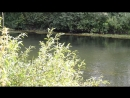 Природа с места съемки