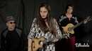 Watch Taimane Debut 3 Songs from Her New Album in this Ukulele Session