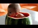 Ребенок ест арбуз.720
