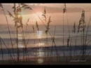 ♥♫ FAUSTO PAPETTI - Sleepy Shores♥♫Relaxing and romantic saxophone ♥♫