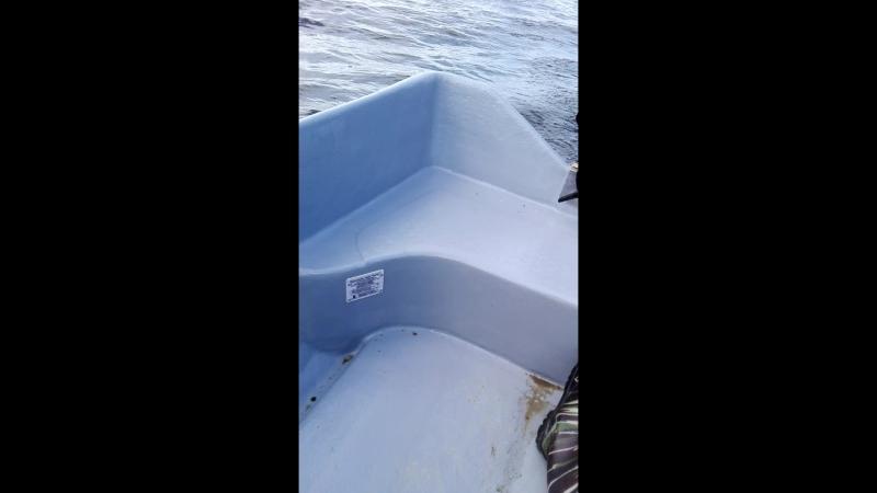 ханкай 6л.с и лодка стеклопластиковая спринт б