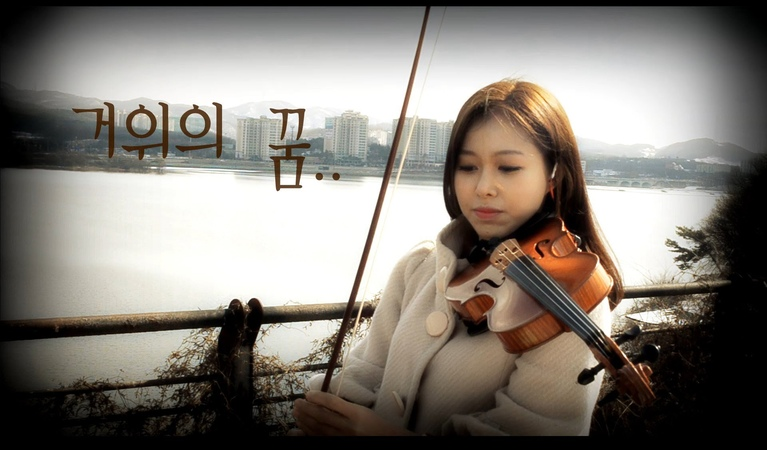 The Carnival A Goose's Dream violin cover KPOP