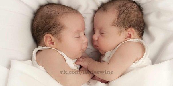 фото новорождённых близнецов
