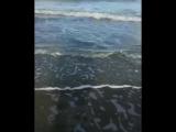 Под Анапой в октябре 2018из моря выловили нильского крокодила ч.1
