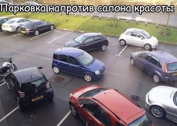 http://cs14115.vk.me/c540100/v540100340/2cb52/ycr5H_CvVP0.jpg