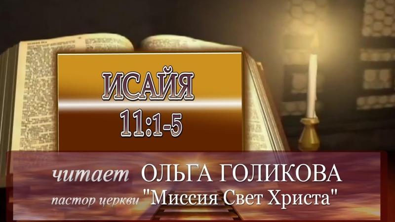 Место из Библии. Наши провозглашения. Исайя 111-5