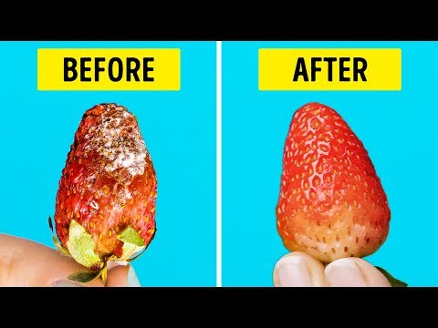25 LIFE HACKS TO MAKE YOUR FOOD LAST LONGER