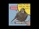 Скайрим надоедливая птица