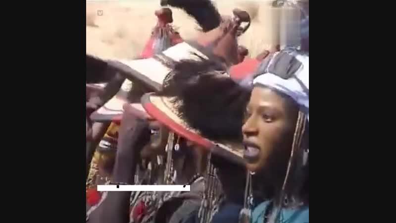 Племя Водабе — один из последних оплотов матриархата на Земле. Женщина здесь всегда права