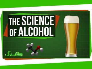 Наука алкоголя: от пива до бурбона