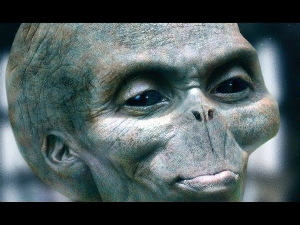 Are Pleiadians or Greys, Humans from a Future Time