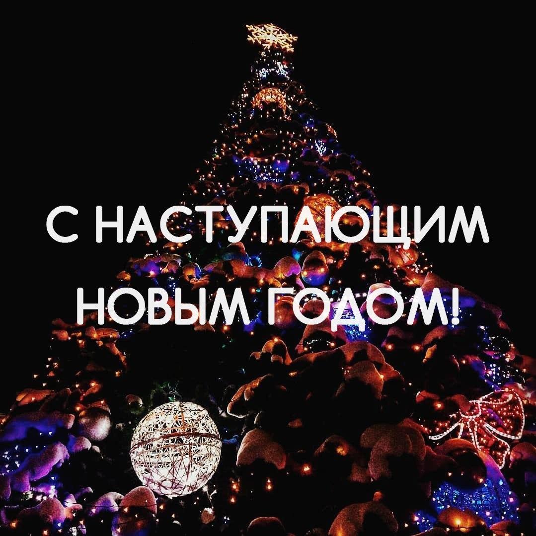 Любимые подписчики, искренне поздравляем вас с наступающим Новым годом!