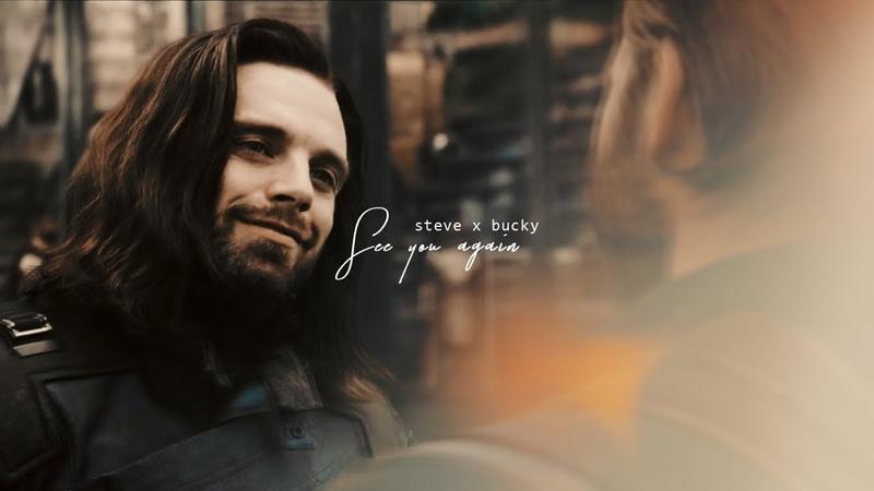 Steve bucky | when i see you again