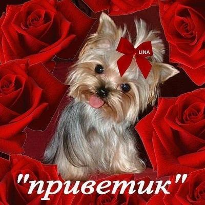 Анжела Мельнык, 3 мая 1999, Ижевск, id222929852