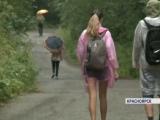 Туристы не боятся медведей и массово идут гулять на «Столбы»