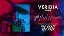 VERIDIA Numb official audio