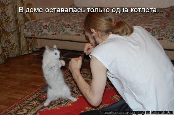 http://cs314717.vk.me/v314717313/63ca/x4jMMYOOn0U.jpg