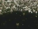 Nikolaj.Gumilev.Afrikanskaya.Ohota-rip.by.mikloeff