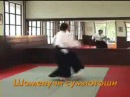 Real aikido. Реальное айкидо (программа на 4 кю).