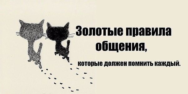 https://pp.vk.me/c543106/v543106112/17d49/7hxpkbWHmVs.jpg