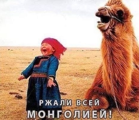 Ржали всей монголией