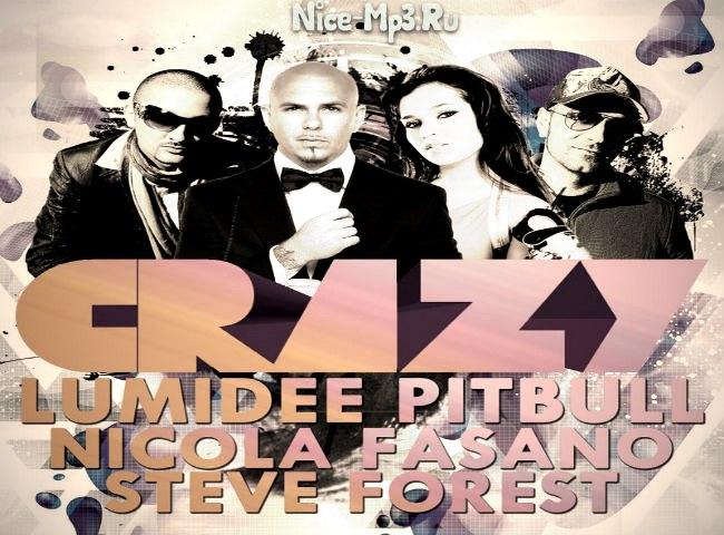 Lumidee feat pitbull vs nicola fasano steve forest crazy