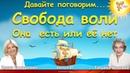 Свобода воли Она есть или её нет Елена Сидорович и Татьяна Беленко YouTube